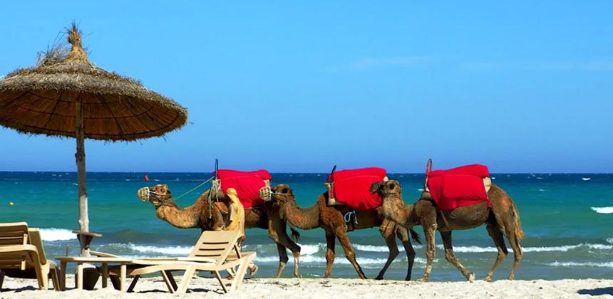 Пляжи Туниса после карантина