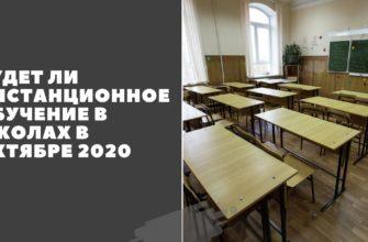 Будет ли дистанционное обучение в школах в октябре 2020