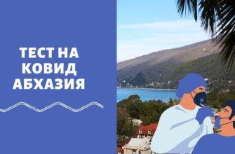 Тест на коронавирус по возвращению из Абхазии — нужно ли сдавать российским туристам
