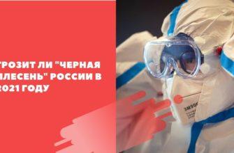 Грозит ли черная плесень России в 2021 году
